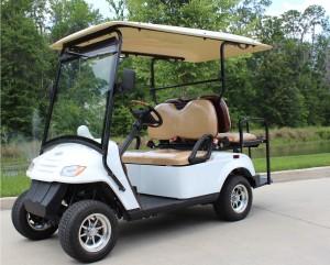 citEcar_4PR_Street_Legal_Golf_Cart_2
